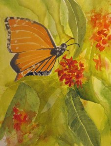 Butterfly - Watercolour