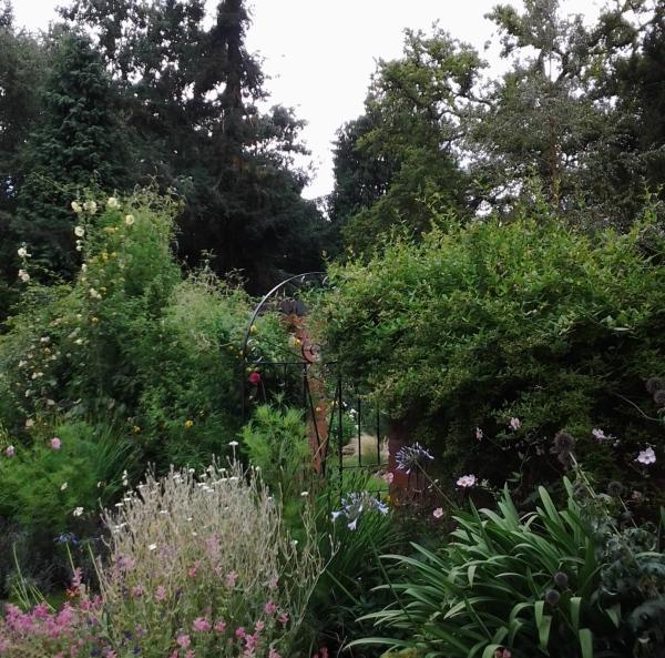 aprilyamasaki.com // Woodbrooke Quaker Study Centre herb garden