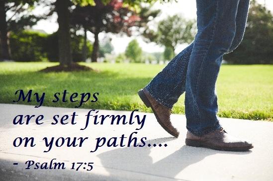 Psalm 17-5
