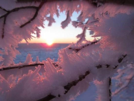winter_photo_by_lois_siemens