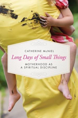 hi-res-book-cover