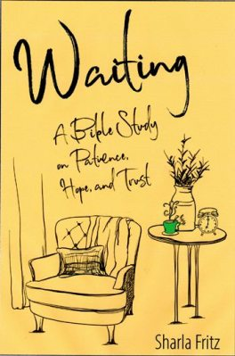 Waiting book cover