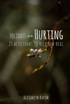 Holidays for the Hurting book cover