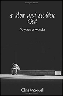 A Slow and Sudden God book cover
