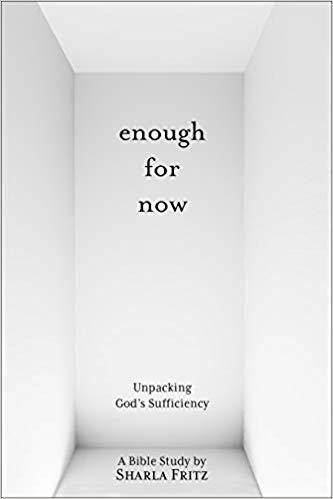Enough for Now book cover