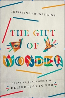 The Gift of Wonder book cover